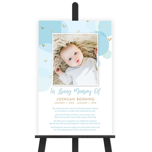 Picture of Baby Boy Poster